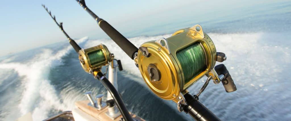 Photo Of Fishing Rods
