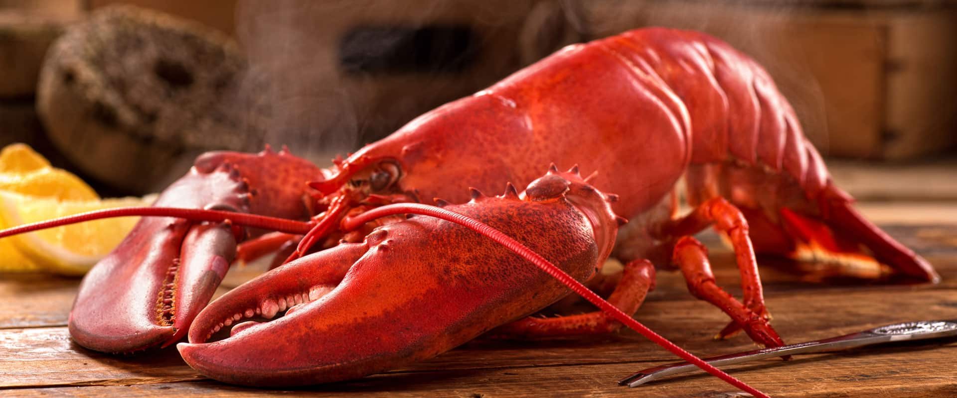 Photo of Lobster Dinner