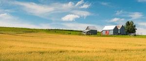 Photo of a farm in New Brunswick