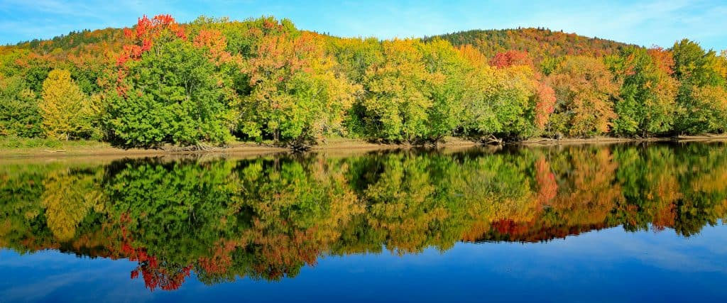Photo of fall foliage on the Kennebecasis River
