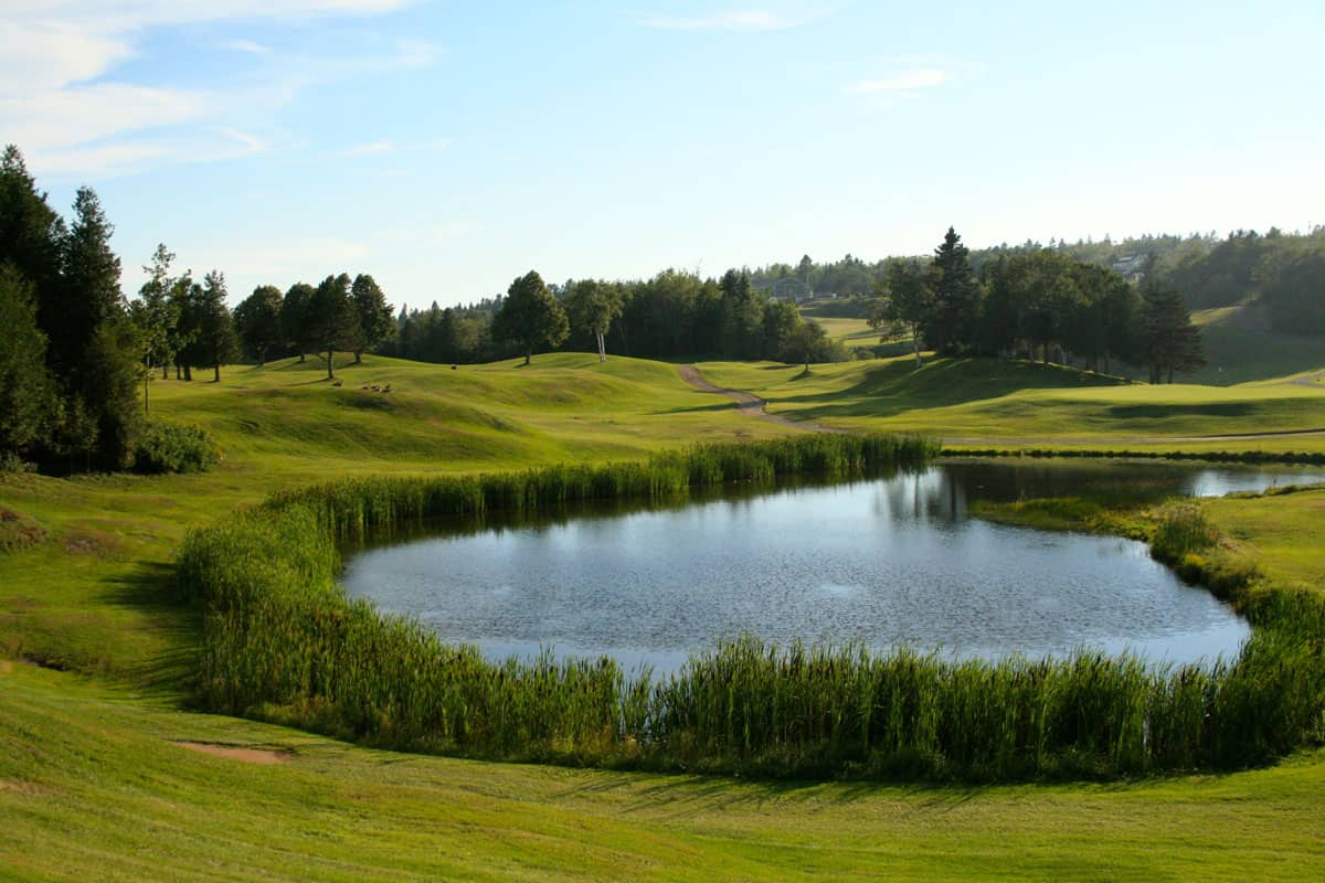 Photo of Rockwood Park Golf Course