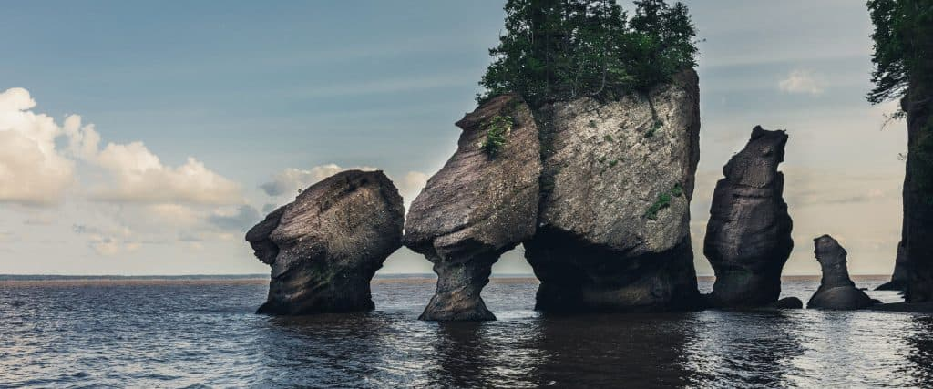 Hopewell Rocks High Tide